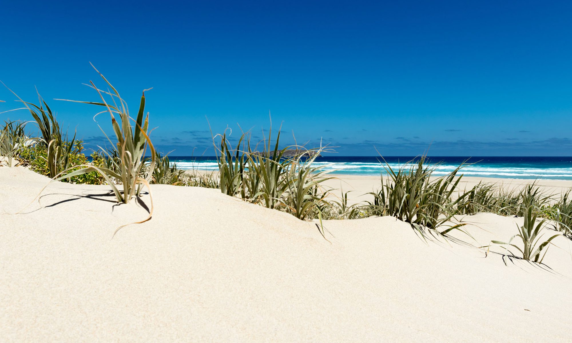 photo with beautiful blue sky and white sand at Reef Beach, Bremer Bay, by Caro Telfer.