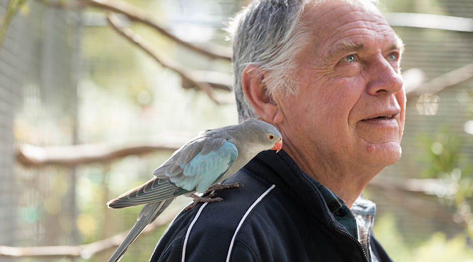 portrait photo of a man and his pet parrot by caro telfer, photographer